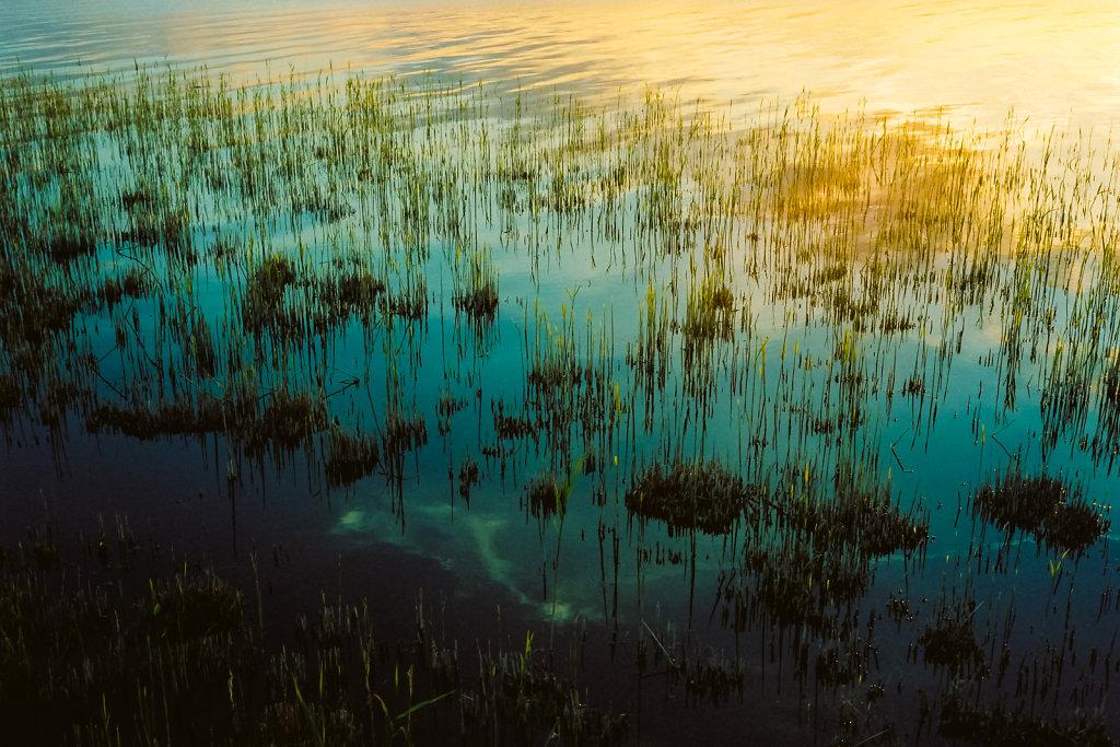 Abendlicht am Achterwasser